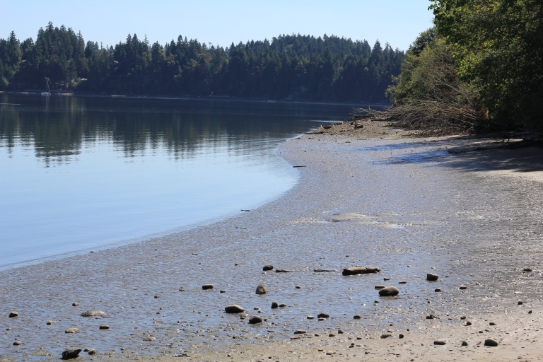 Another Day at Woodard Bay, cookdrinkhike.wordpress.com