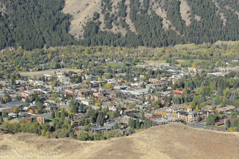 Close-up view of Ketchum.