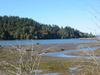 A little Nisqually, cookdrinkhike.wordpress.com