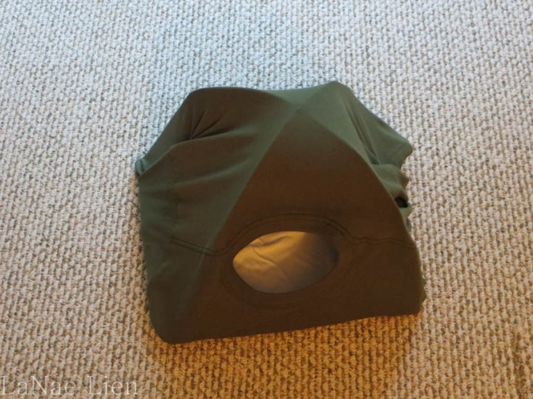 My cat tent.