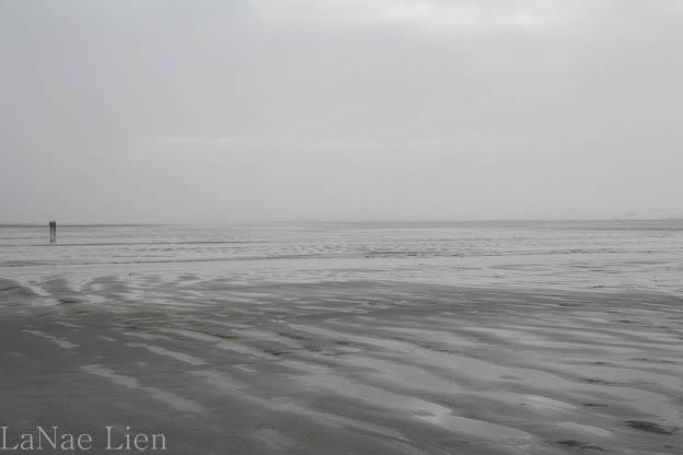 20170121-ocean-shores-8