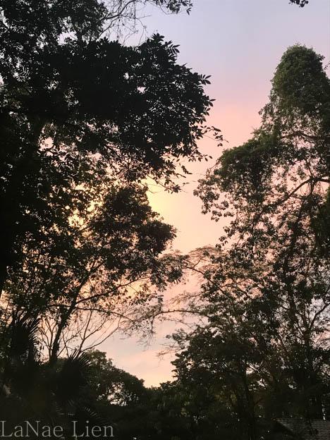 20170419-Costa Rica-37