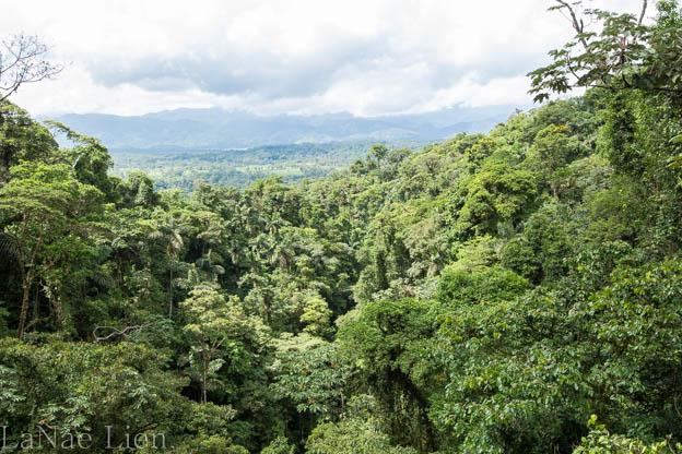 20170419-Costa Rica-48