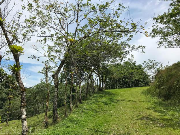 20170420-Costa Rica-21