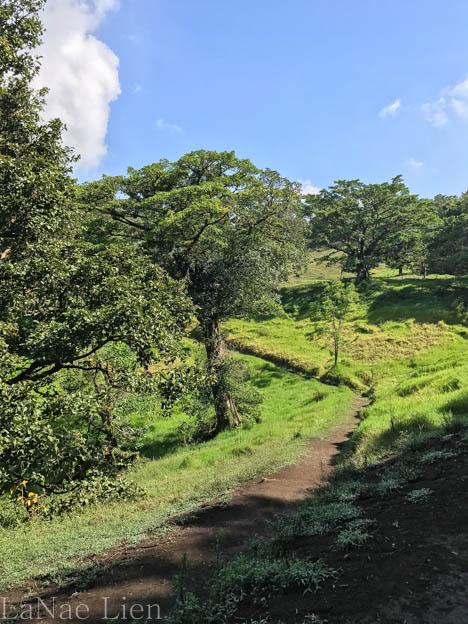 20170423-Costa Rica-50