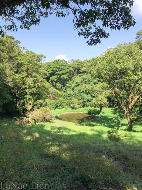 20170423-Costa Rica-61