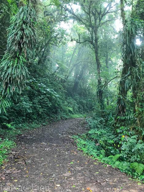 20170424-Costa Rica-22