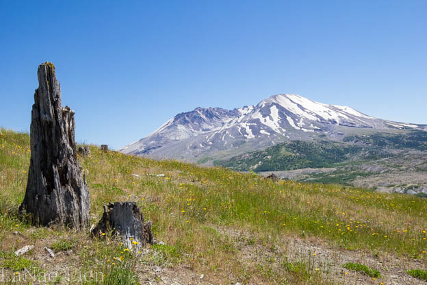 20170701-Mt St Helens-169