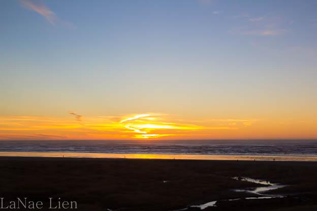 20180113-Quinault-ocean shores-130