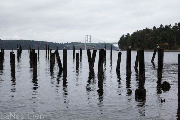 20180120-Titlow Beach-34