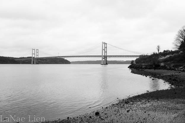 20180120-Titlow Beach-50-2