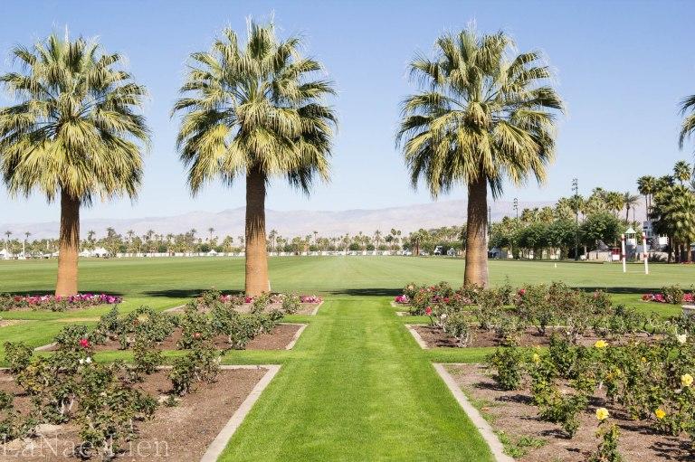 20180217-Palm Springs-10