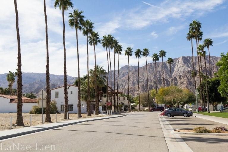 20180217-Palm Springs-22