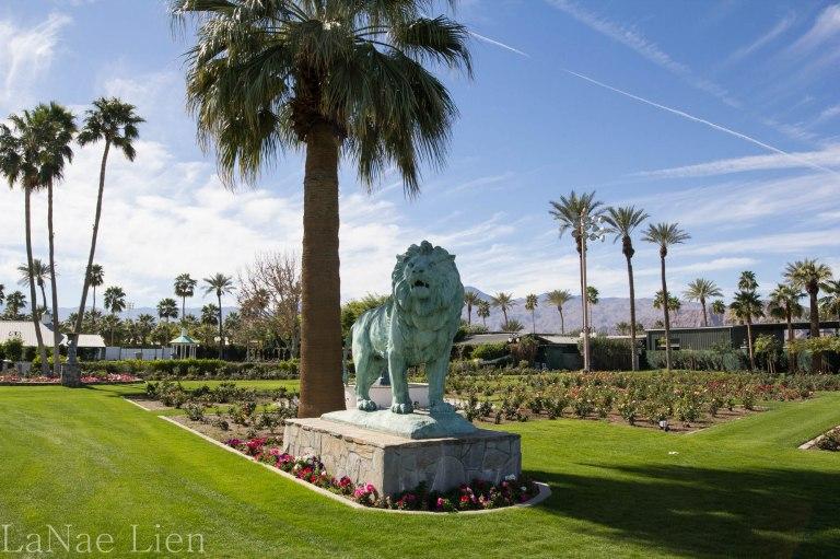 20180217-Palm Springs-8