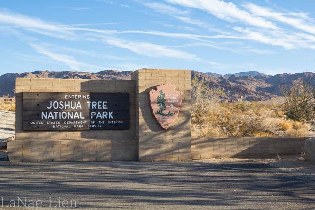 20180218-Joshua Tree-2