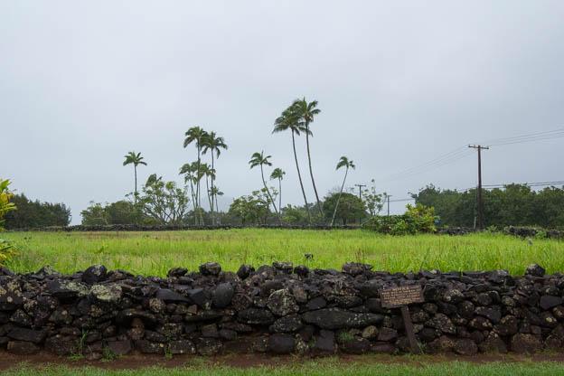 20180415 Kauai-IMG_0016