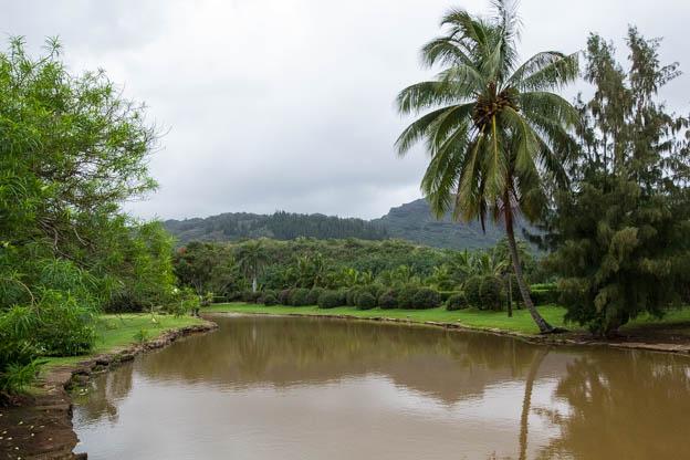 20180416 Kauai-IMG_0166