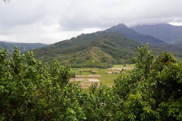 20180418 Kauai-IMG_0213