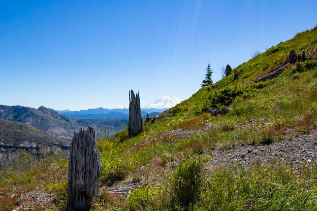 20180624 mt st h, harrys ridge-IMG_0026